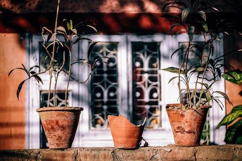 Riscos que você corre ao não fazer a manutenção de sua casa